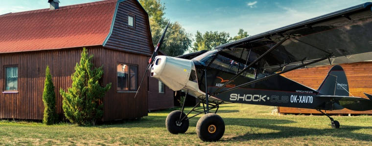 Savage Shock Cub